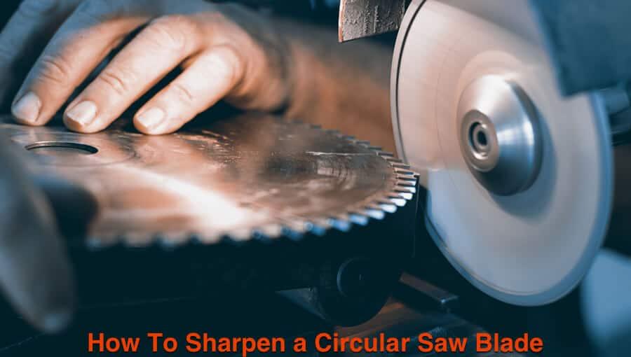Sharpen the dulled circular saw blade on grinder machine.