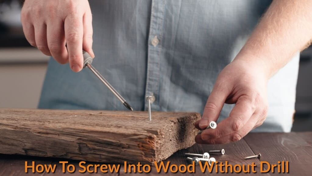 Drill a screw into wood manually by hand tool.